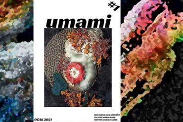 Her Tabak Bir Binadır: Umami Fanzin Röportajı (PDFli)